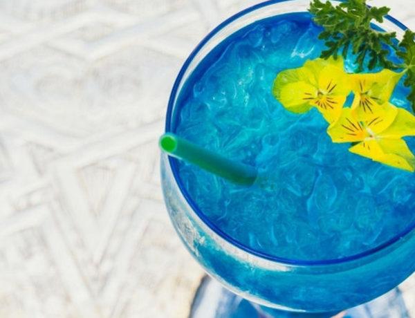 La Sultana Marrakesh- signature cocktail Yves Saint Laurent